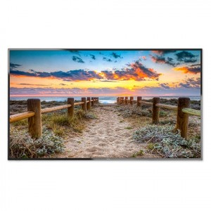 Nec E556 54.6 LED FHD 60Hz Multi-Sync